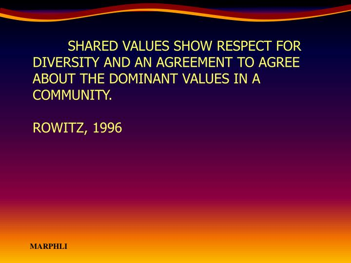 SHARED VALUES SHOW RESPECT FOR DIVERSITY AND AN AGREEMENT TO AGREE ABOUT THE DOMINANT VALUES IN A COMMUNITY.