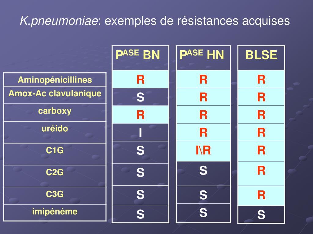 K.pneumoniae