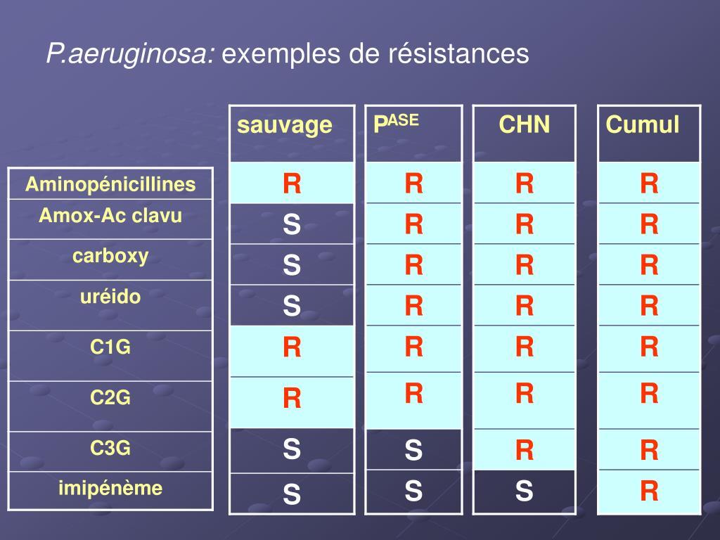 P.aeruginosa: