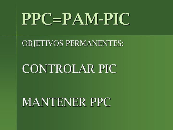 PPC=PAM-PIC