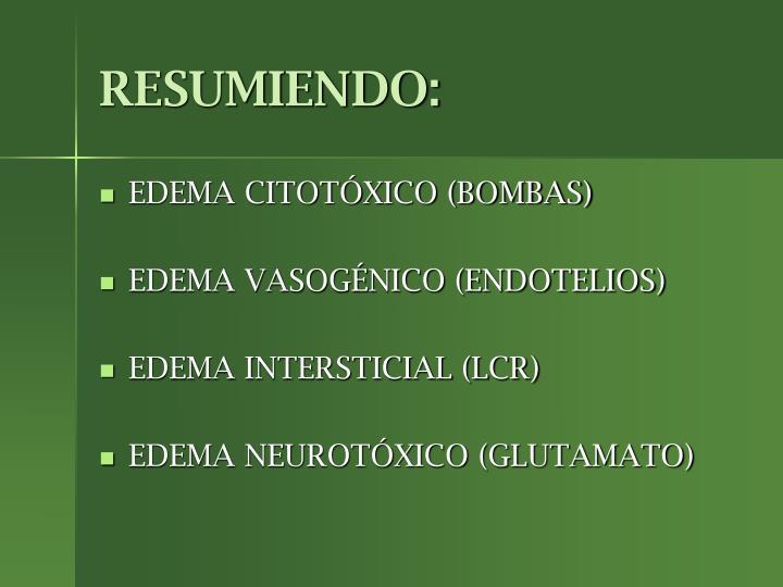 RESUMIENDO:
