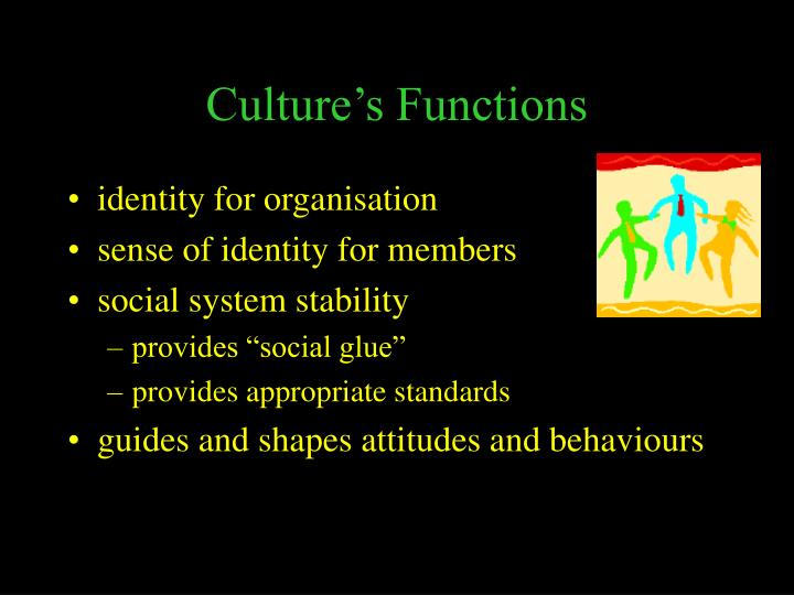 Culture's Functions