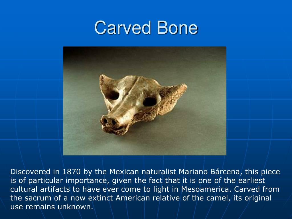 Carved Bone