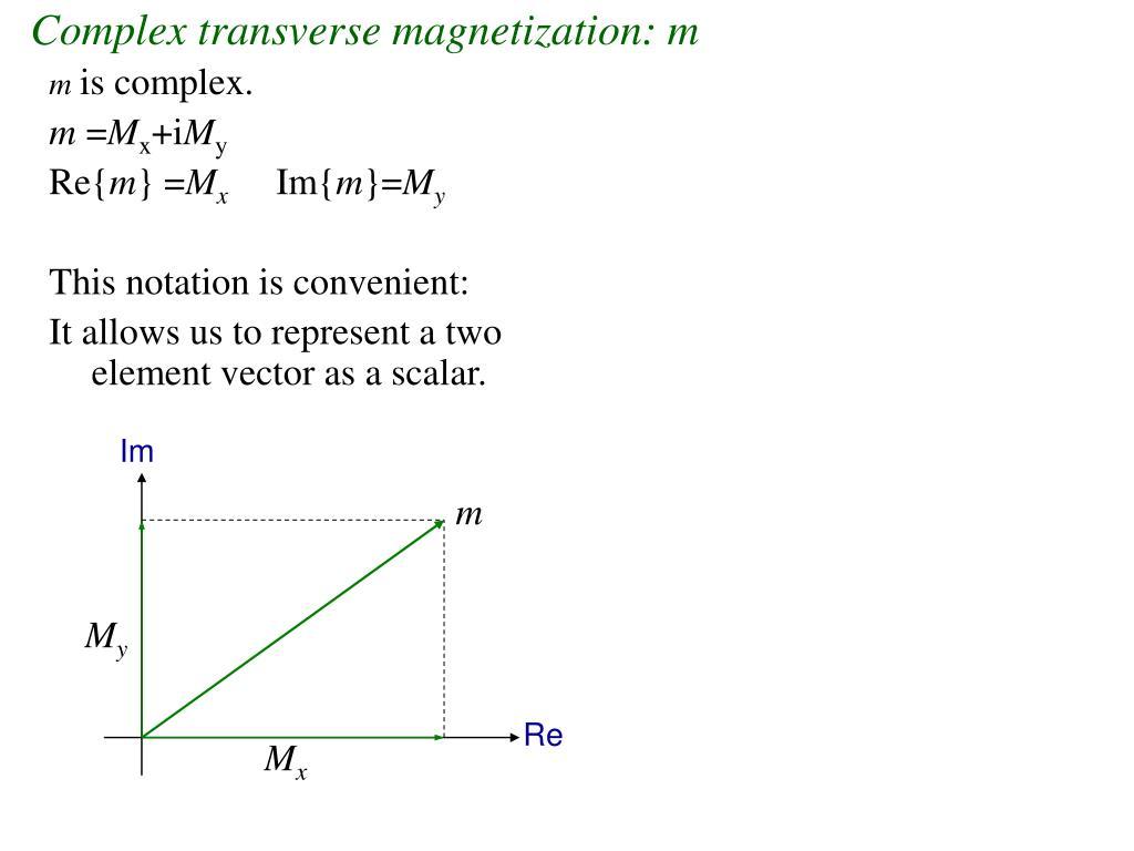 Complex transverse magnetization: m