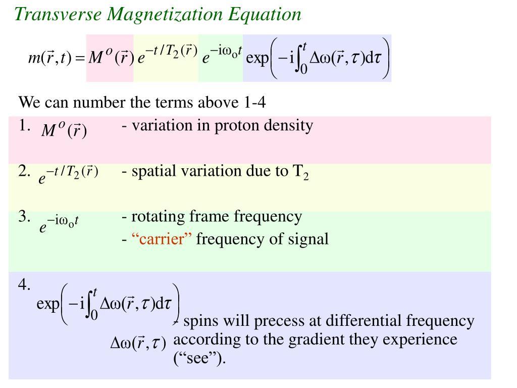 Transverse Magnetization Equation