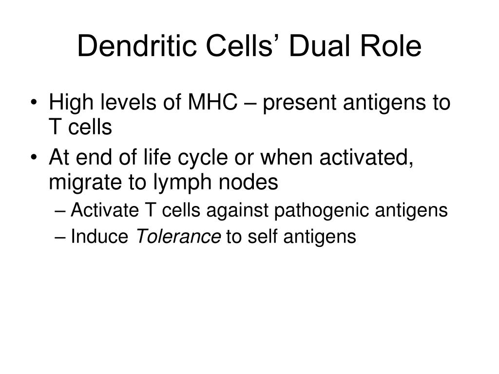 Dendritic Cells' Dual Role