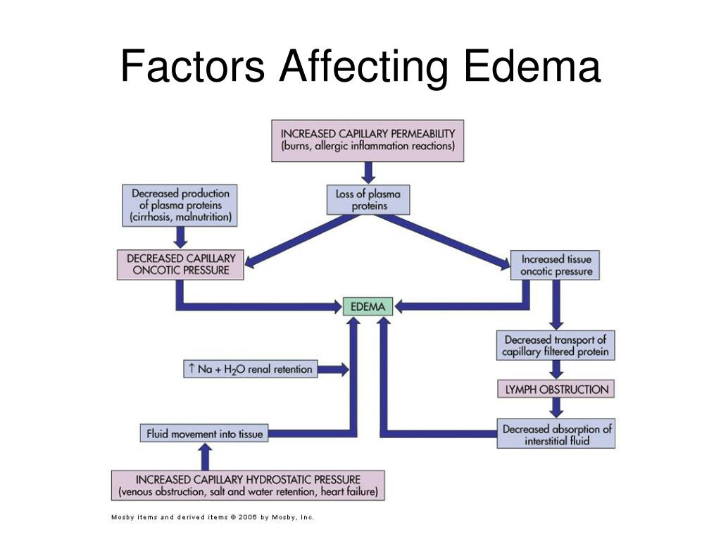 Factors Affecting Edema