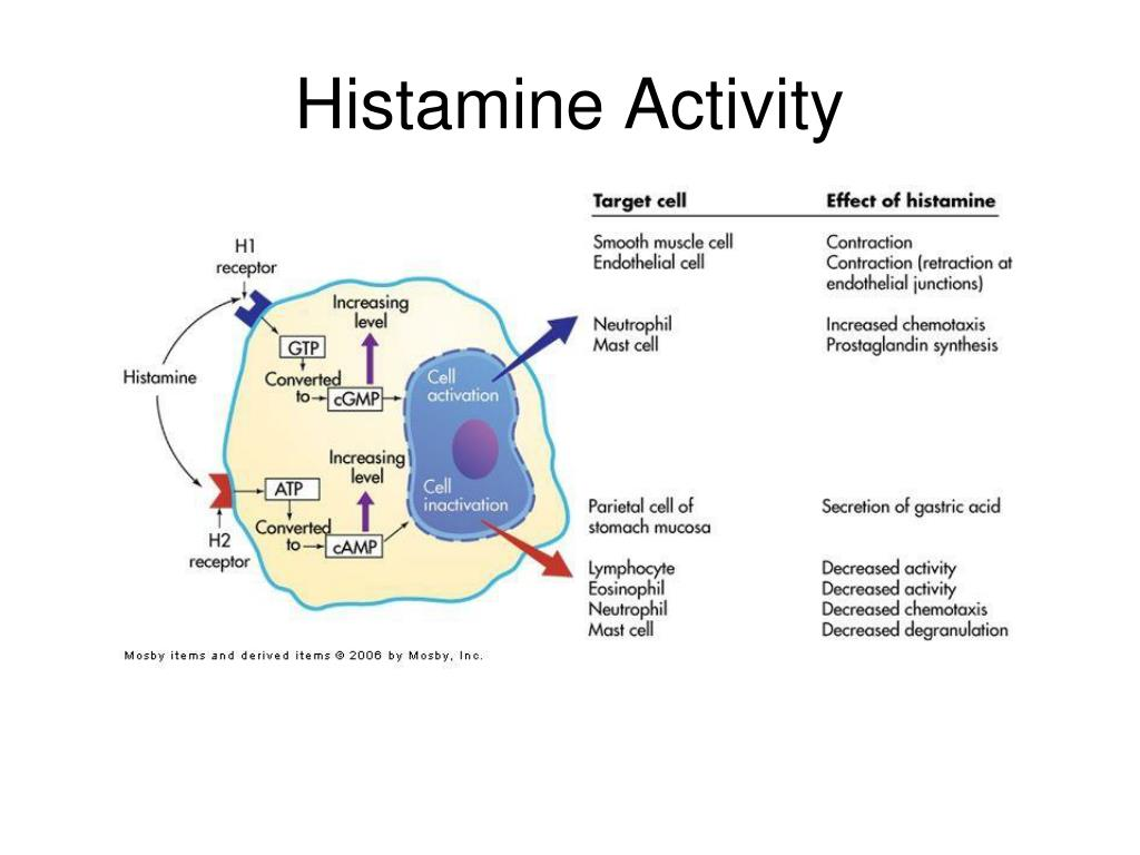 Histamine Activity