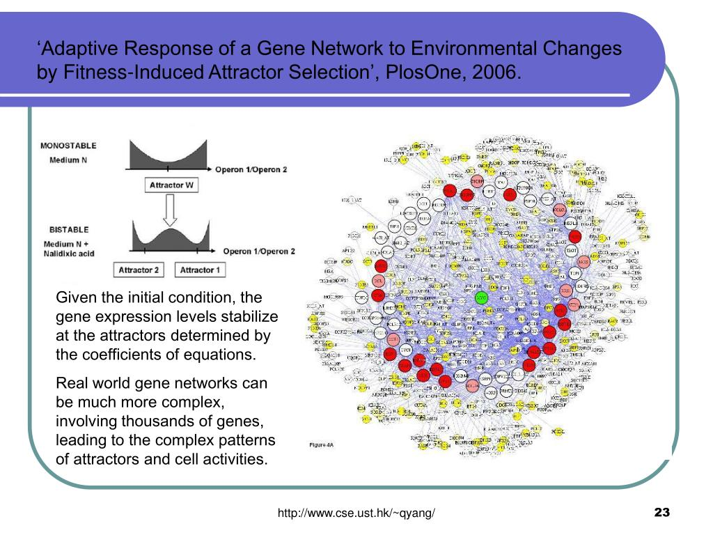 'Adaptive Response of a Gene Network to Environmental Changes by Fitness-Induced Attractor Selection', PlosOne, 2006.