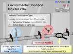 environmental condition indicate hail