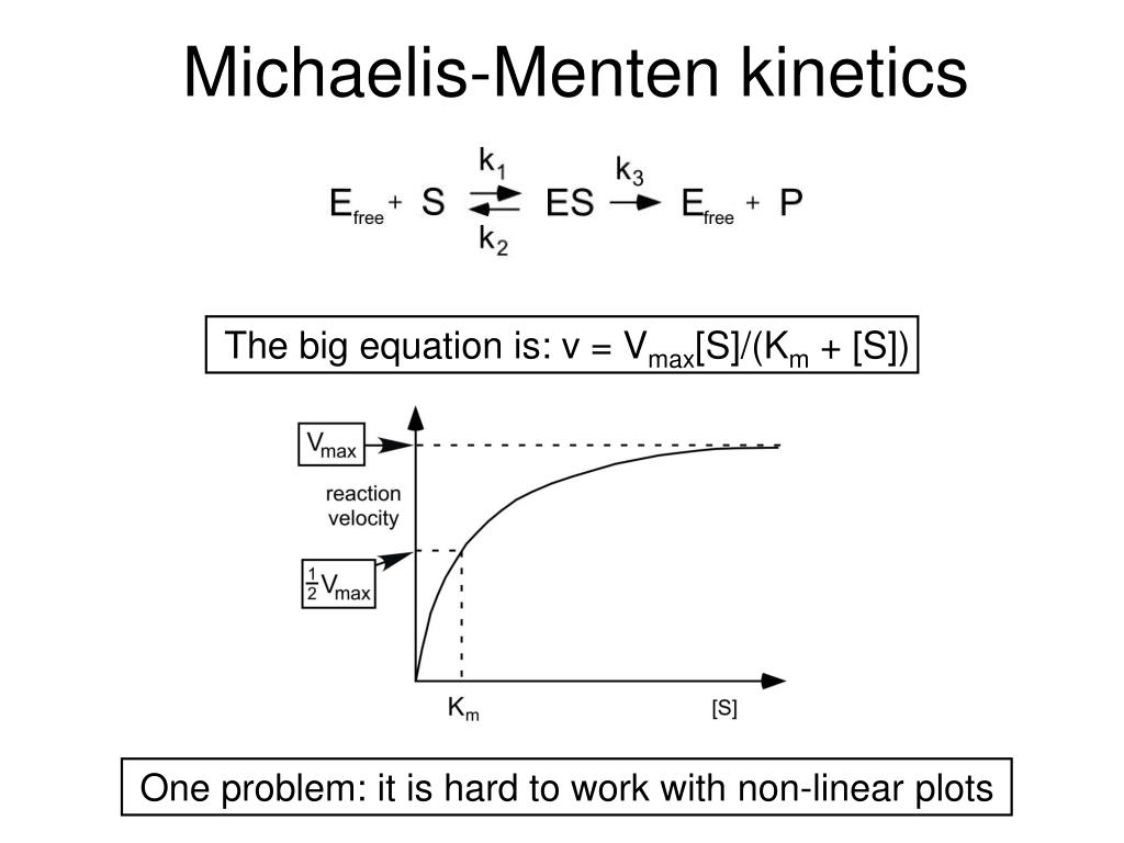 enzyme kinetics lecture Enzyme kinetics, deals with enzyme reactions which are time-dependent and explains the mechanisms of enzyme catalysis and its regulation let's understand enzyme kinetics as a function for the concentration of the substrate available for the.