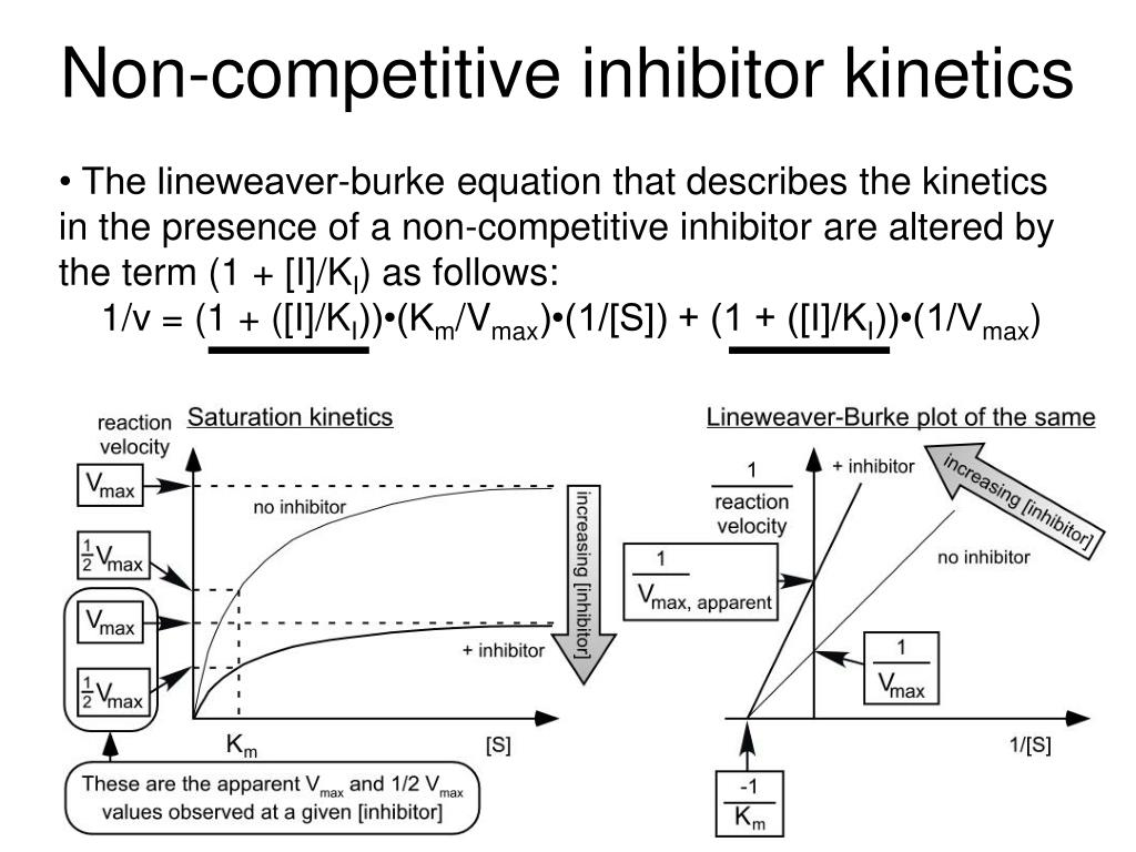 properties of enzymes and competitive inhibitors Explain what an enzyme inhibitor is distinguish between reversible and irreversible inhibitors distinguish between competitive and noncompetitive inhibitors previously, we noted that enzymes are inactivated at high temperatures and by changes in ph these are nonspecific factors that would.