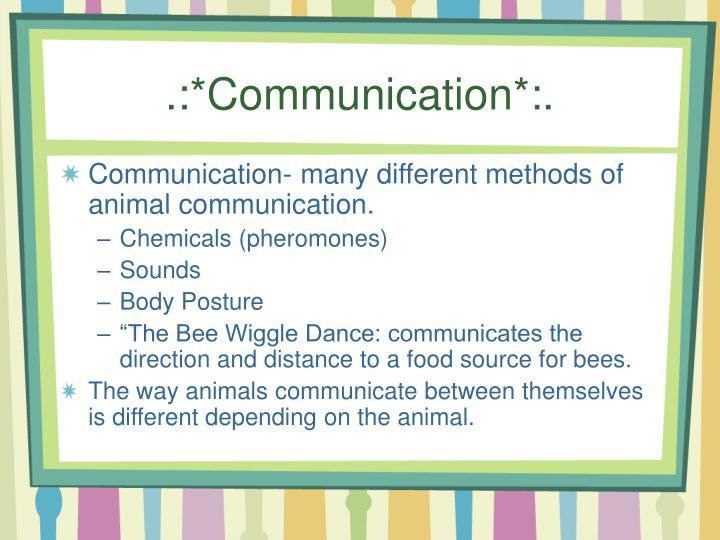 .:*Communication*:.