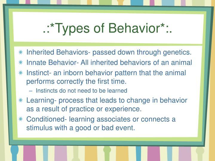 .:*Types of Behavior*:.