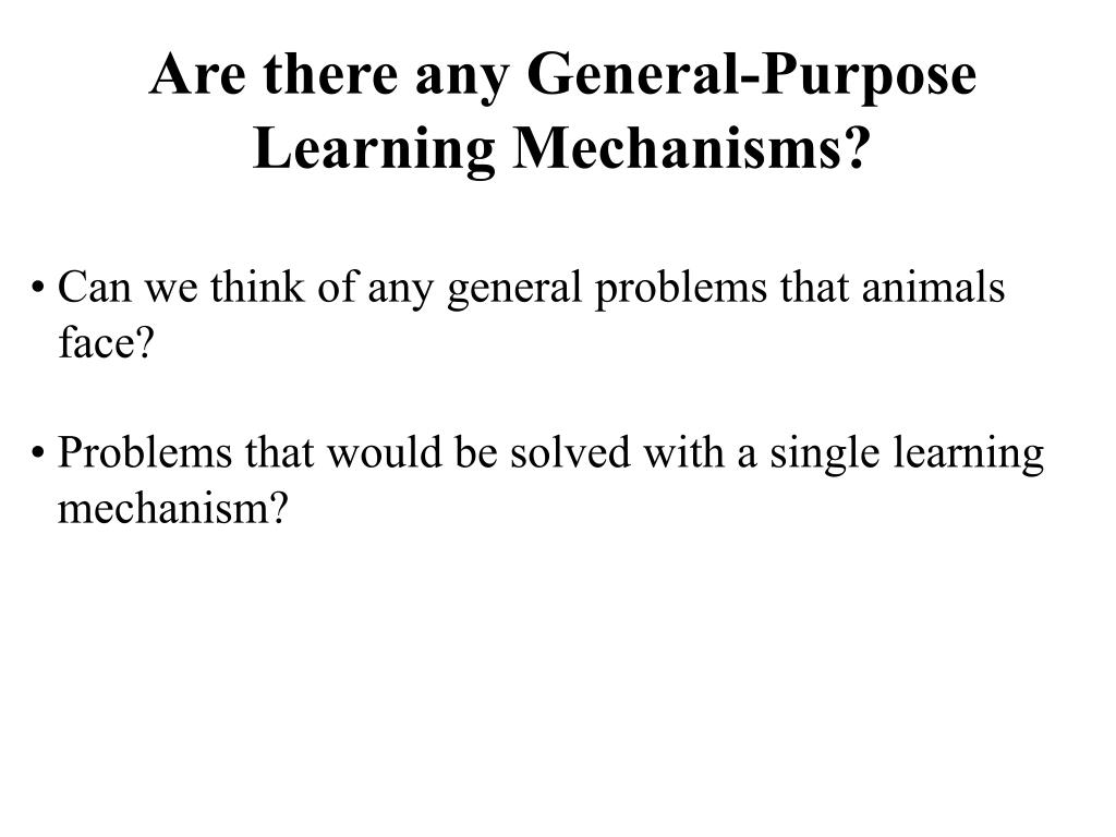 Are there any General-Purpose Learning Mechanisms?