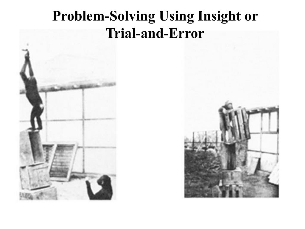 Problem-Solving Using Insight or Trial-and-Error