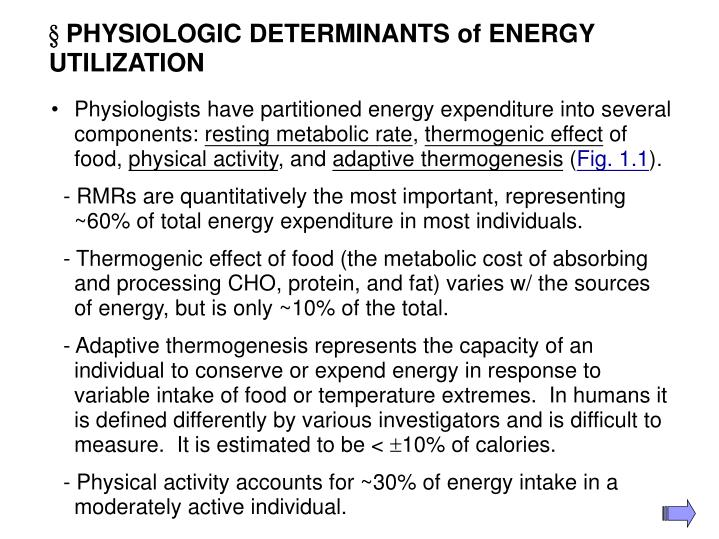 Physiologic determinants of energy utilization