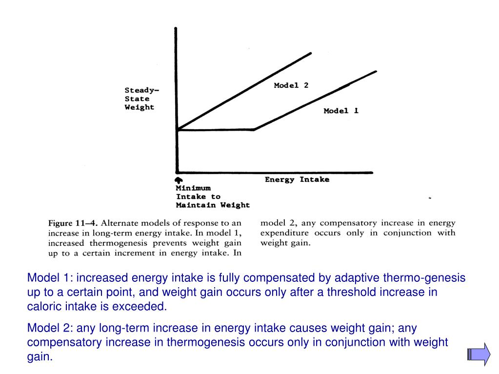 Model 1: increased energy intake is fully compensated by adaptive thermo-genesis up to a certain point, and weight gain occurs only after a threshold increase in caloric intake is exceeded.