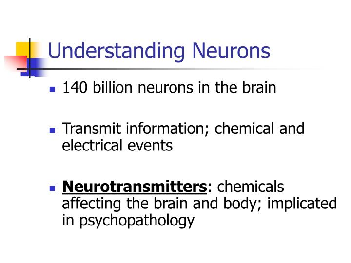 Understanding Neurons