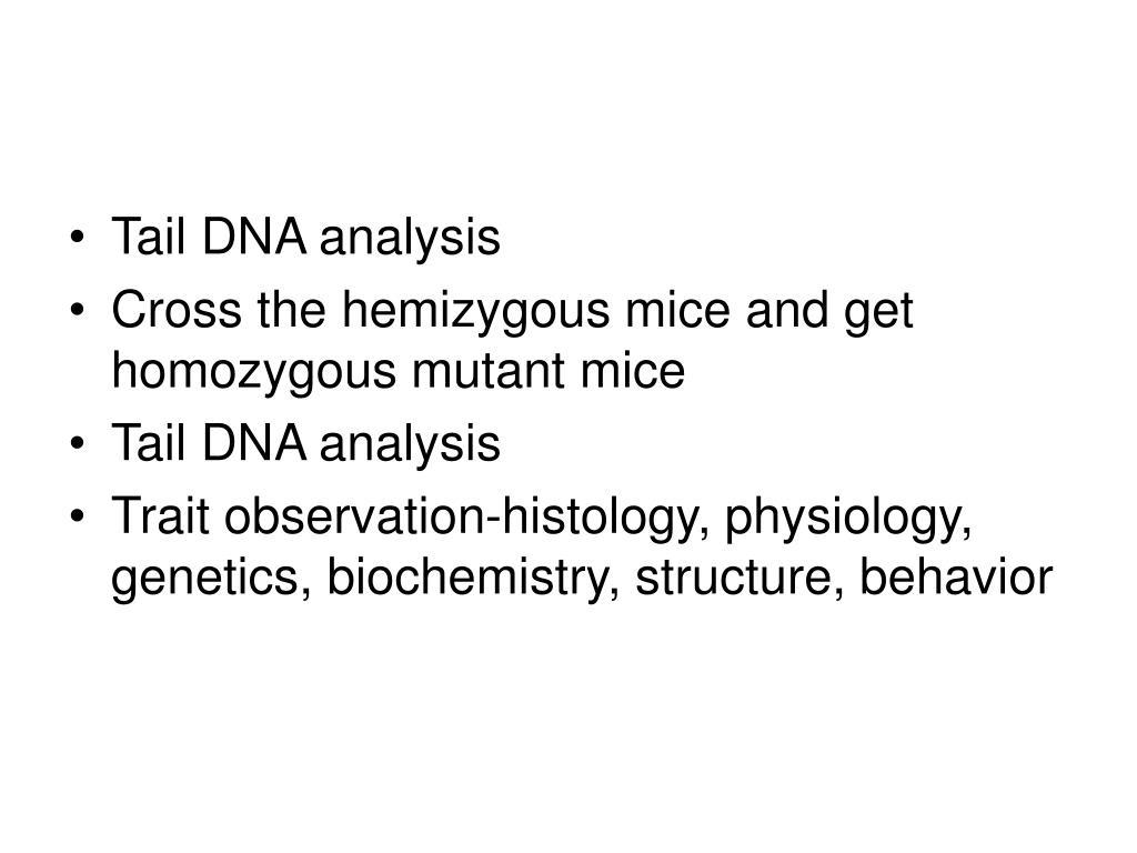 Tail DNA analysis