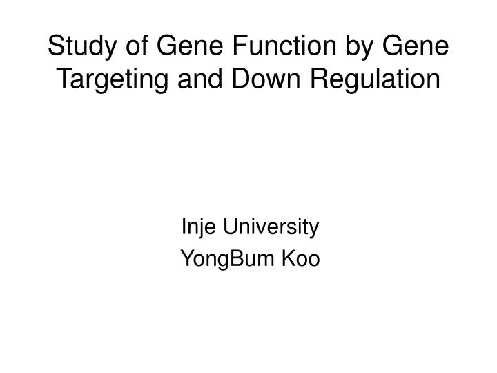 Study of gene function by gene targeting and down regulation l.jpg