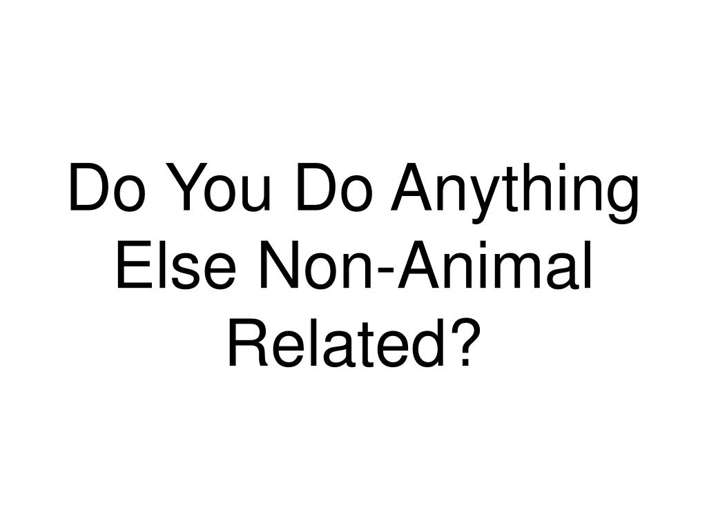 Do You Do Anything Else Non-Animal Related?