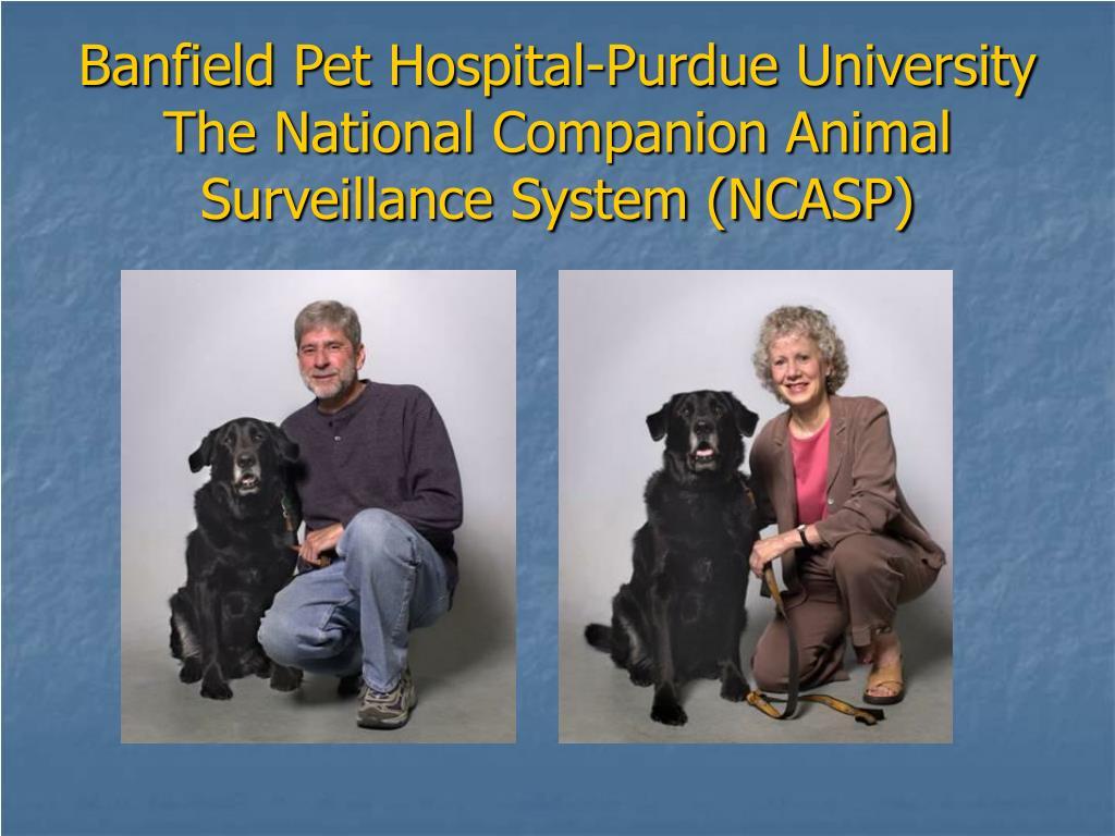 Banfield Pet Hospital-Purdue University