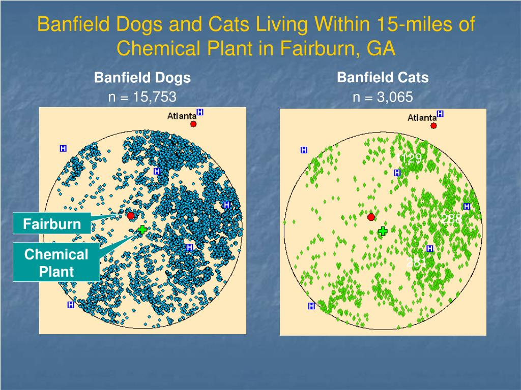 Banfield Dogs and Cats Living Within 15-miles of