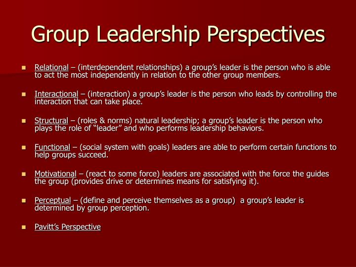 Group leadership perspectives
