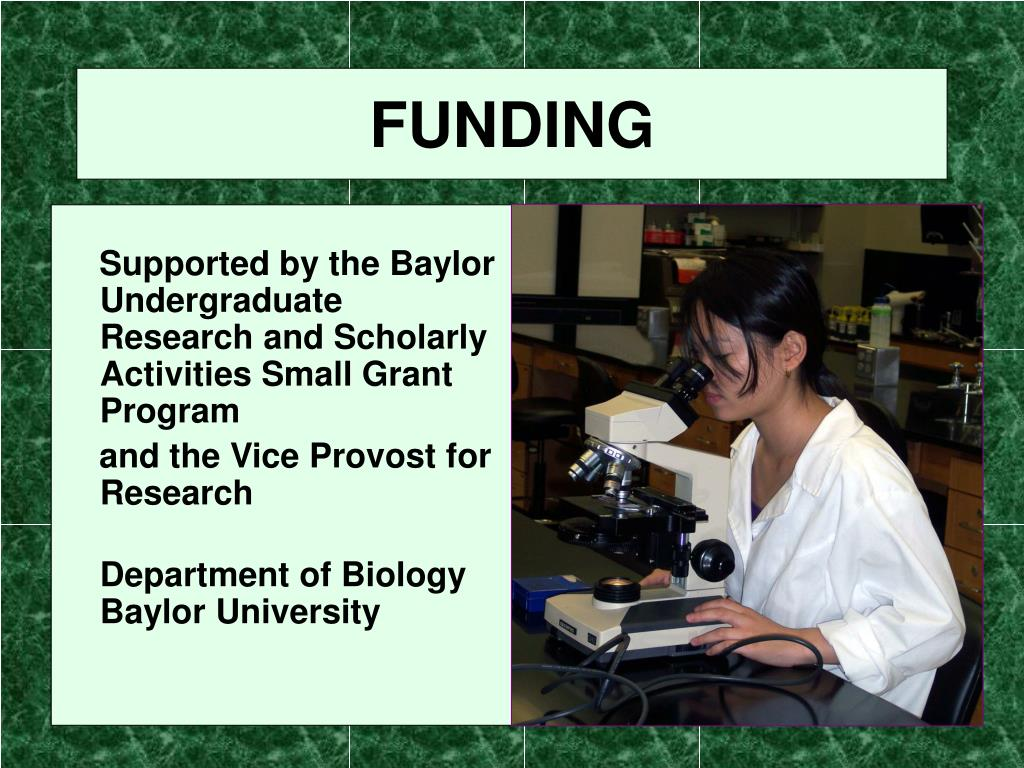 Supported by the Baylor Undergraduate Research and Scholarly Activities Small Grant Program