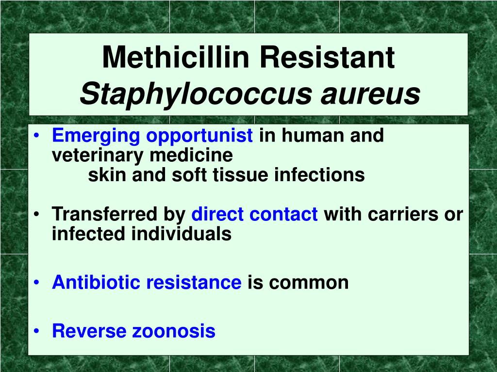 Methicillin Resistant