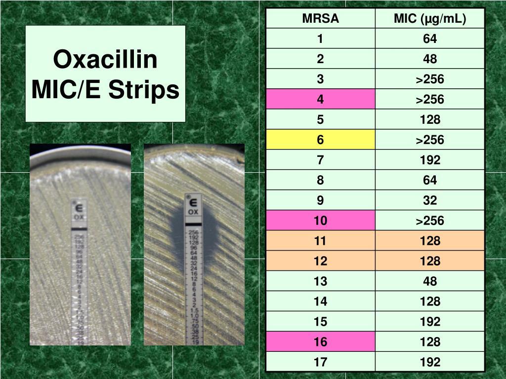 Oxacillin MIC/E Strips