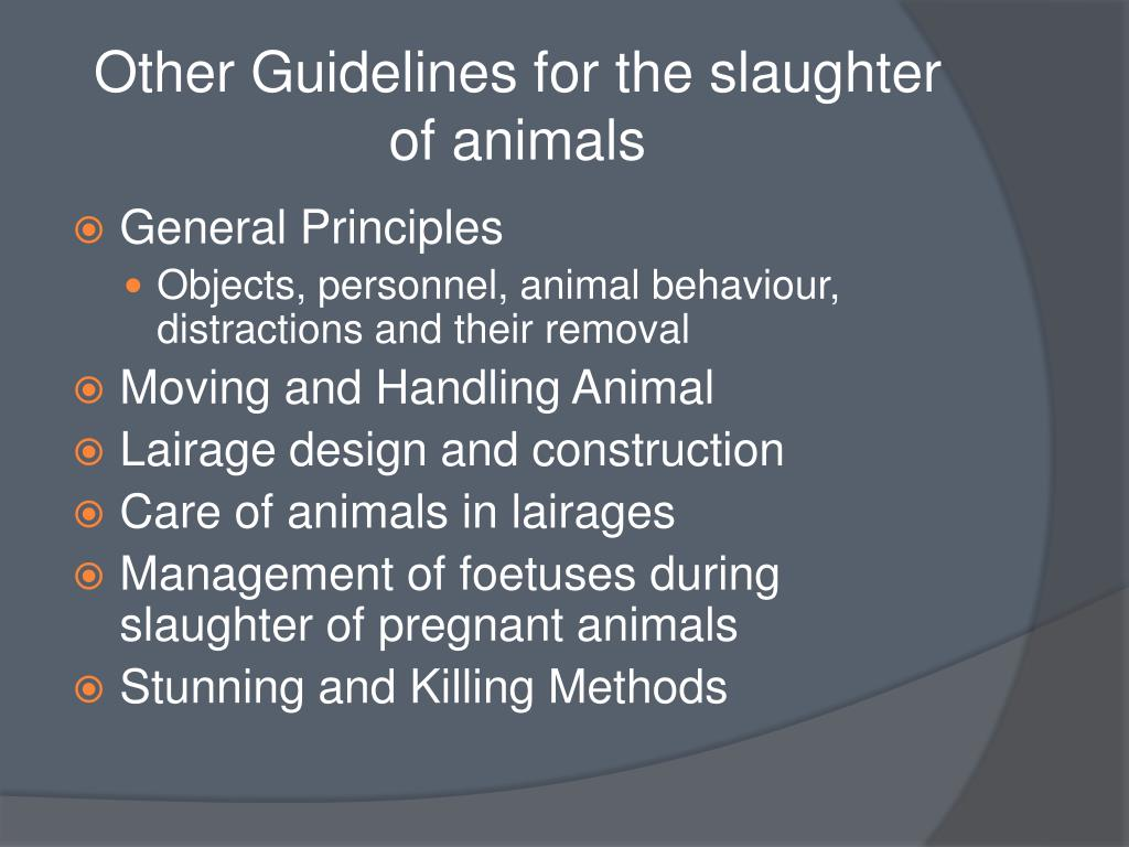 Other Guidelines for the slaughter