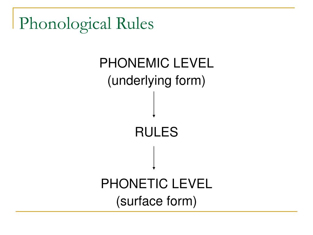 Phonological Rules