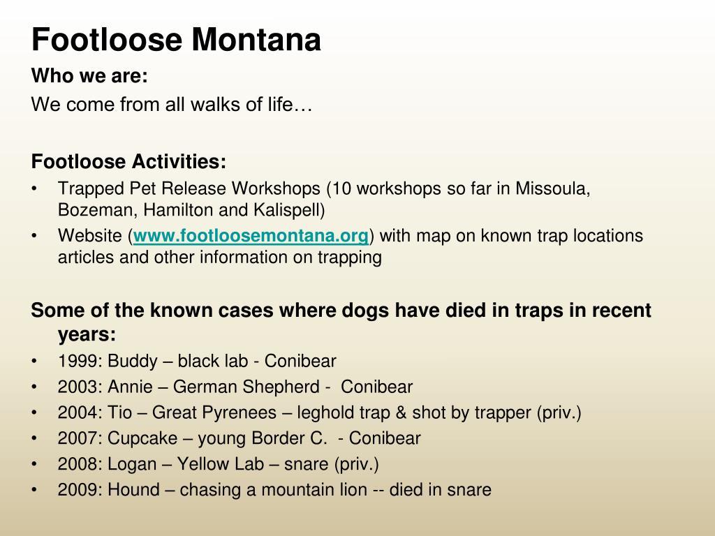 Footloose Montana