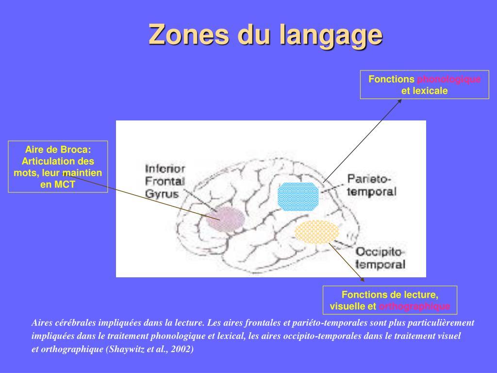Zones du langage