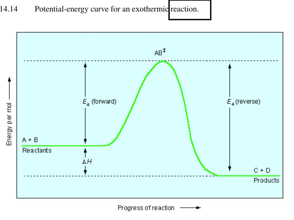Figure 14.14    Potential-energy curve for an exothermic reaction.