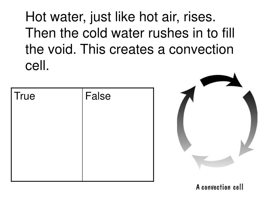 Hot water, just like hot air, rises. Then the cold water rushes in to fill the void. This creates a convection cell.