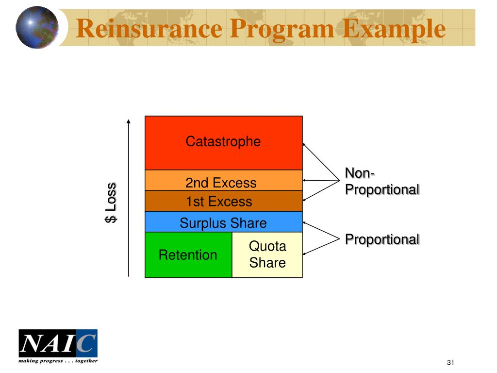 Reinsurance Program Example