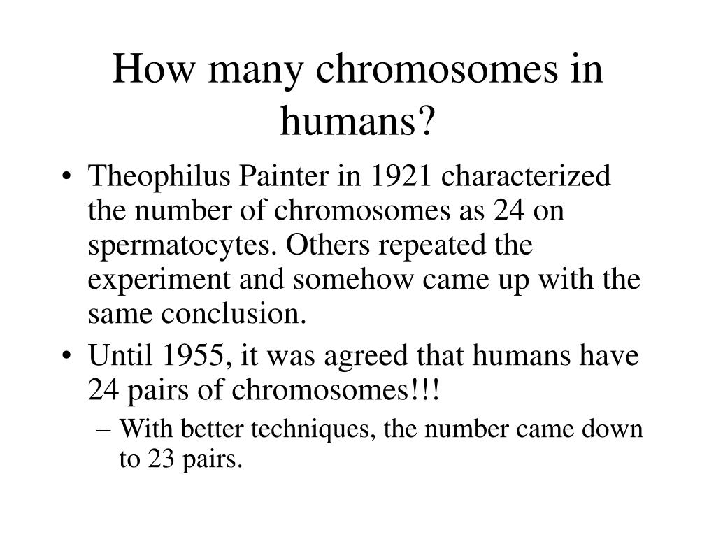 How many chromosomes in humans?