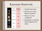 karyotype homework
