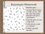 karyotypes homework