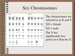 sex chromosomes13