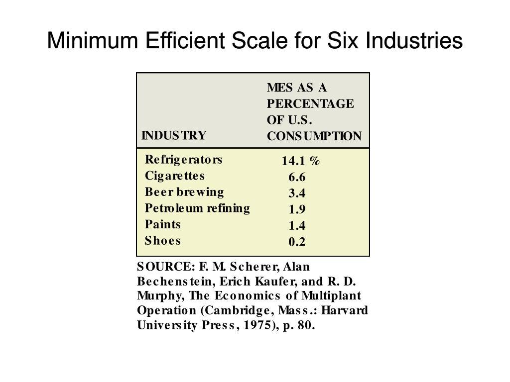 Minimum Efficient Scale for Six Industries