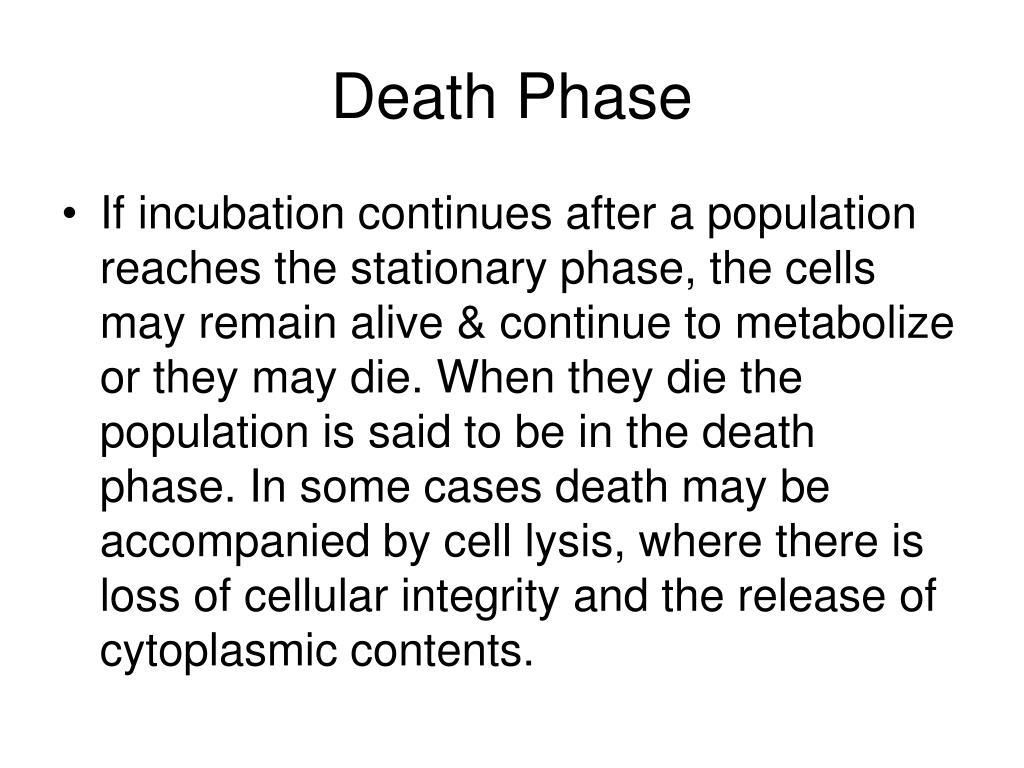 Death Phase