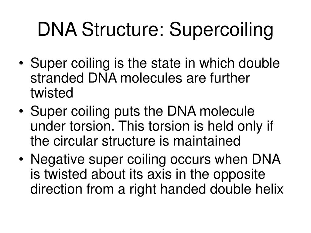 DNA Structure: Supercoiling