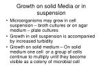 growth on solid media or in suspension