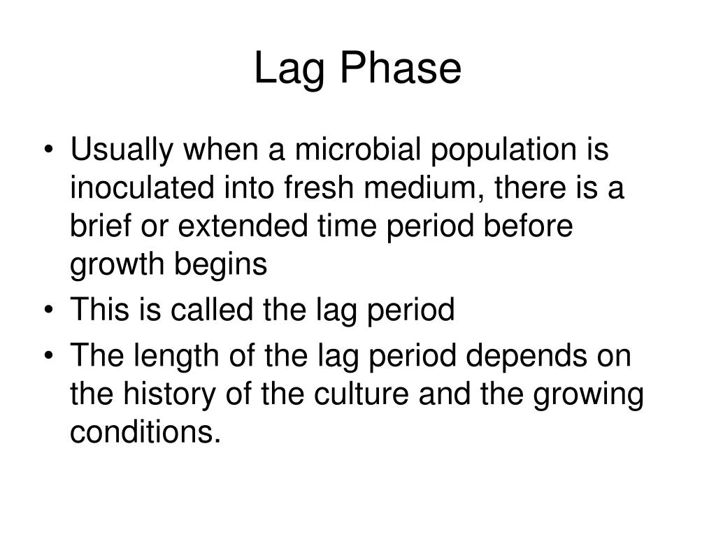 Lag Phase