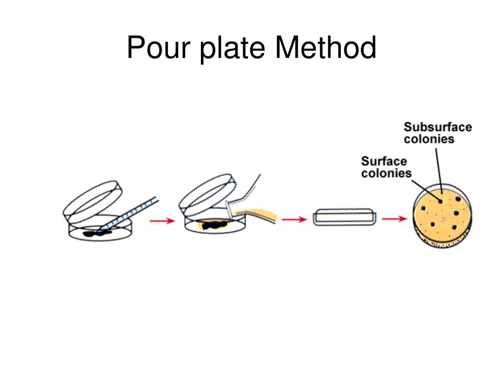 Pour plate Method