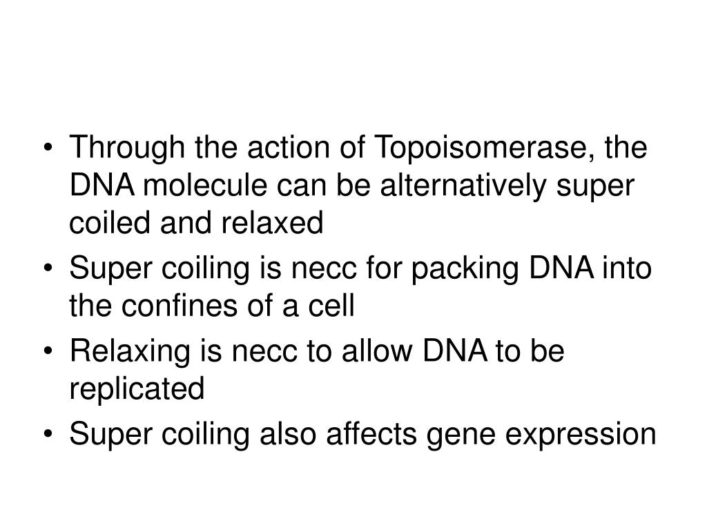 Through the action of Topoisomerase, the DNA molecule can be alternatively super coiled and relaxed
